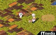 hn_tails01.jpg
