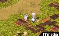 hn_tails02.jpg