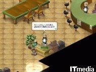 hn_casino002.jpg