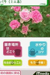 wk_070406dsstyle11.jpg