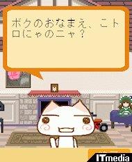 ta_toro01.jpg