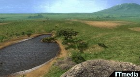 wk_080606afrika05.jpg