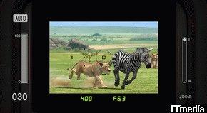 wk_080606afrika06.jpg