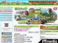 wk_081229hibikore02.jpg