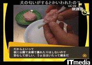 wk_090501hibikore06.jpg