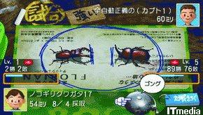 wk_090515bokunatsu19.jpg