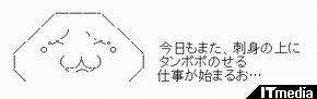 wk_090526hibikore03.jpg
