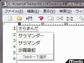 wk_091204hibikore10.jpg