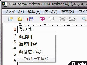 wk_091204hibikore11.jpg