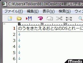 wk_091204hibikore18.jpg