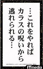 wk_100528jojo06.jpg