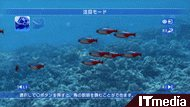tm_20100907_blueoasis04.jpg