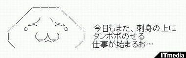 wk_100924hibikore01.jpg