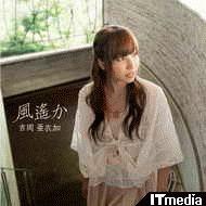 wk_101126yoshi100.jpg