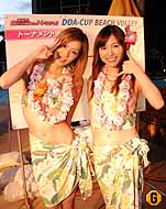 hawai13.jpg