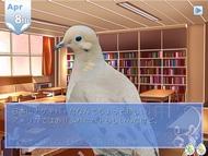 ky_hato_0812_005.jpg