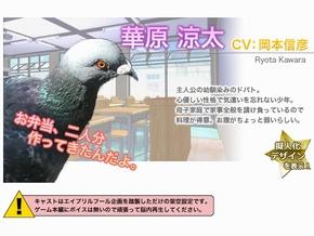 ky_hato_0812_008.jpg