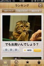 ah_boke7.jpg
