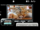 Wii Uがニコニコ対応! 「ニコニコ」アプリ、本体発売と同時に無料配信
