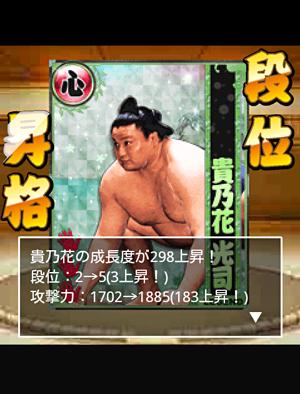 ah_sumo3.png