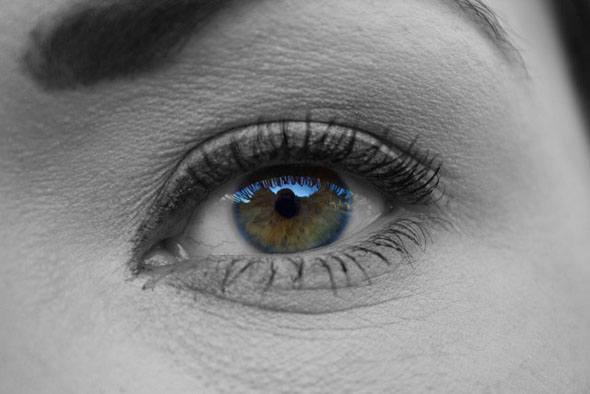 ts_eye04.jpg