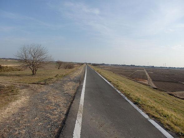 ts_bike_002.jpg