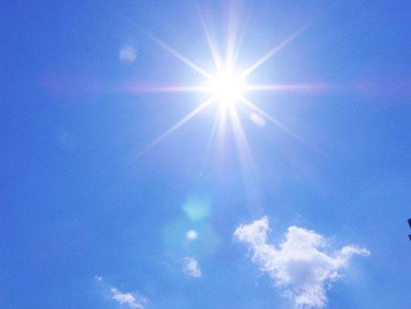 日光 アレルギー と は