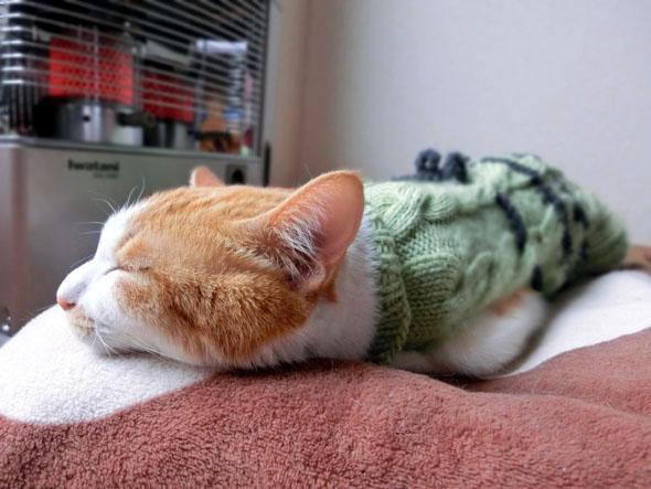 眠れないなら抱きしめよう! 抱き枕が睡眠に「効く」理由