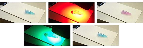 タンパク質の光スイッチングの例