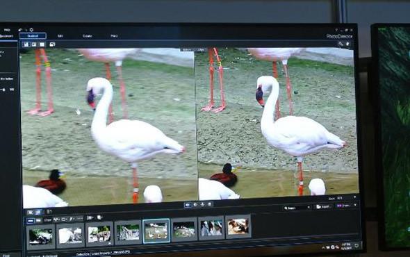 Gigapixel AIの画質補正。左がHD画質。AIによる補完によって、描画が甘かった画像の画質を右の4Kクオリティ画質に補完しているのが見て取れる