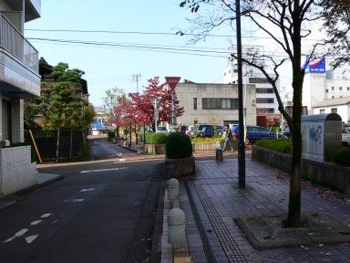 jn_p1000156.jpg