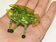 バンダイ、カサカサ動きまわる昆虫ロボ「HEX BUG」を正式発表
