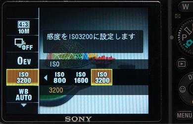 hi_DSC_0306.jpg
