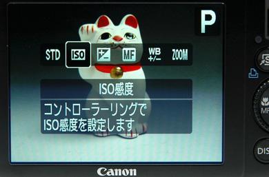 hi_DSC_1150.jpg