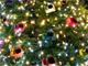 お台場に「K-x」100色を飾り付けたクリスマスツリー