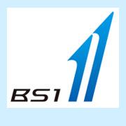 ts_bs1_mark.jpg