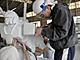 ガンダムの大理石像、まもなく公開