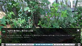 ts_hybridcast08.jpg