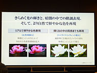 ts_toshiba8z04.jpg