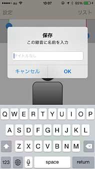 ts_voicec01.jpg