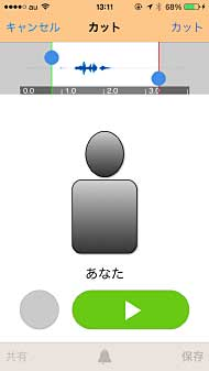 ts_voicec03.jpg