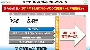 ts_hikari021.jpg