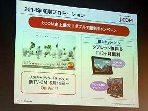 ts_jcom13.jpg