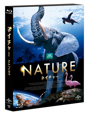 hs_Dolby_Atmos_Nature_2.jpg