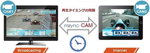 ts_msinc02.jpg