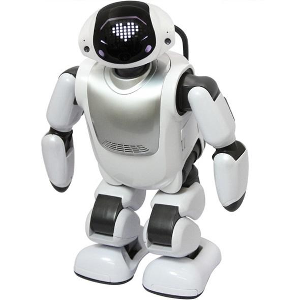 hm_dmmrobot01.jpg