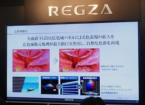 ts_regzaj20x10.jpg