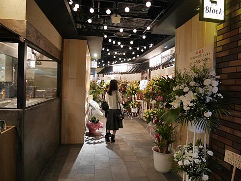 ts_akibayodo21.jpg