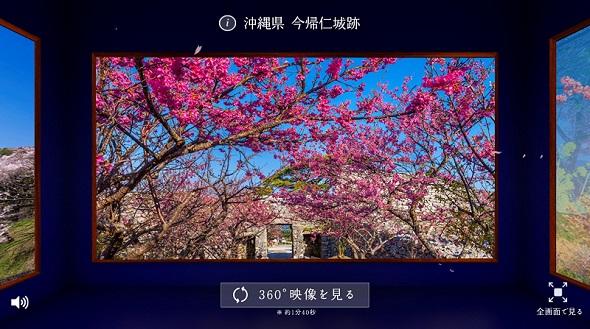 hm_su02.jpg