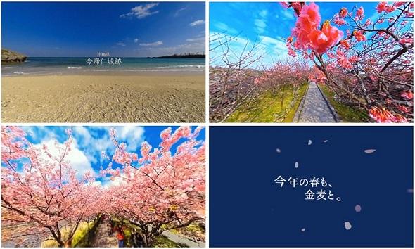 hm_su03.jpg